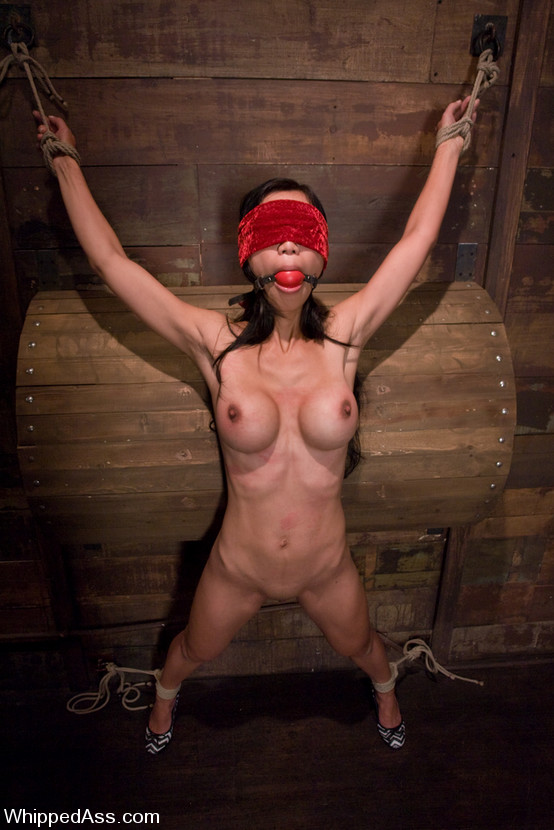 The Pain Files  Extreme BDSM and Pain